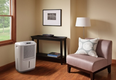 5 Reasons why You Should Invest in a Home Dehumidifier Picture