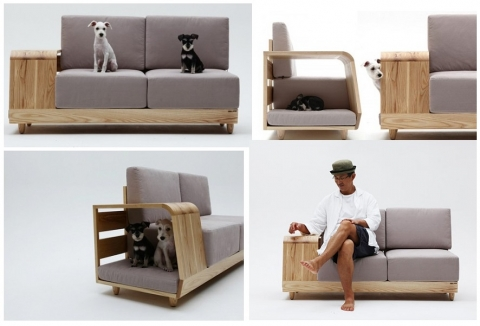 Pet Friendly Furniture Picture
